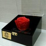 باکس گل رز جاودان تک شاخه