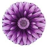 فرش سه بعدی زرباف طرح گل داوودی رنگ یاسی