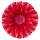 فرش سه بعدی زرباف طرح گل داوودی رنگ قرمز